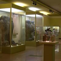 Virtuális kiállítás